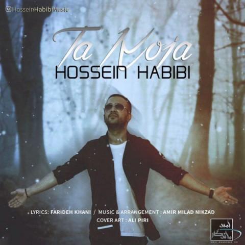 دانلود آهنگ جدید حسین حبیبی به نام تا کجا
