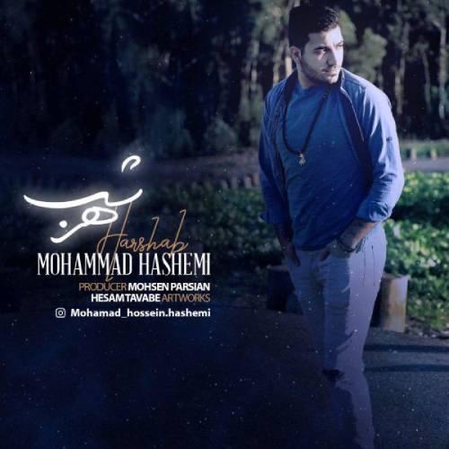 دانلود آهنگ جدید محمد هاشمی به نام هر شب